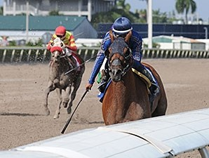 My Pal Chrisy wins the 2013 Millions Distaff Preview Stakes.