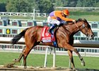 "Beholder takes on 7 in the Las Virgenes Stakes.<br><a target=""blank"" href=""http://photos.bloodhorse.com/BreedersCup/2012-Breeders-Cup/Juvenile-Fillies/26130210_XSj9gp#!i=2191793794&k=84JtKwD"">Order This Photo</a>"