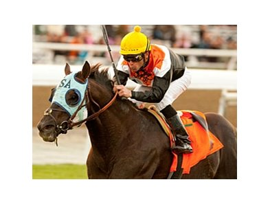 "Dilemma and Garrett Gomez take the Daytona Stakes at Santa Anita.<br><a target=""blank"" href=""http://www.bloodhorse.com/horse-racing/photo-store?ref=http%3A%2F%2Fpictopia.com%2Fperl%2Fgal%3Fprovider_id%3D368%26ptp_photo_id%3D9352709%26ref%3Dstory"">Order This Photo</a>"