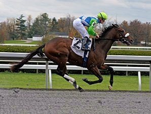 Barbaro's Brother Lentenor Third in Debut