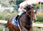 Fantasy winner Rachel Alexandra will ship to Churchill Downs April 8.