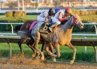 Gold Cup Headlines Hawthorne Fall Meet