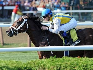 Multiple Graded Winner Dominus to Spendthrift