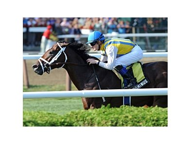 "Dominus<br><a target=""blank"" href=""http://photos.bloodhorse.com/AtTheRaces-1/at-the-races-2012/22274956_jFd5jM#!i=2061185333&k=xnZdGWf"">Order This Photo</a>"