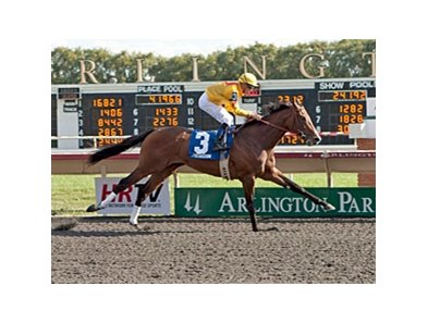 Pataky Kid winning the 2012 Arlington-Washington Futurity.