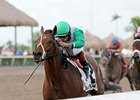 Csaba won the Harlan's Holiday by 3 3/4 lengths on Dec 16.