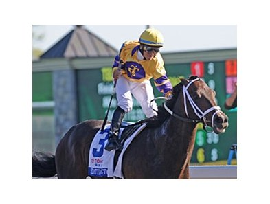 "Stately Victor<br><a target=""blank"" href=""http://www.bloodhorse.com/horse-racing/photo-store?ref=http%3A%2F%2Fpictopia.com%2Fperl%2Fgal%3Fprovider_id%3D368%26ptp_photo_id%3D8886093%26ref%3Dstory"">Order This Photo</a>"