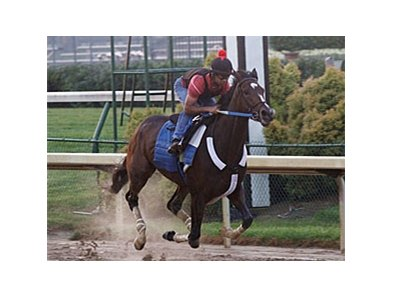 Rachel Alexandra is scheduled to make her next start in the Lady's Secret Stakes at Monmouth.