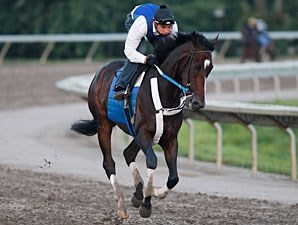 Rachel Alexandra gallops at Monmouth, August 1, 2009.