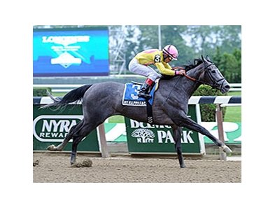 "My Happy Face won the Lotka Stakes in the mud at Belmont Park at a mile in June.<br><a target=""blank"" href=""http://photos.bloodhorse.com/AtTheRaces-1/at-the-races-2013/27257665_QgCqdh#!i=2935404640&k=6gV2dFT"">Order This Photo</a>"