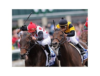Brilliant Speed in the 2011 Blue Grass Stakes.