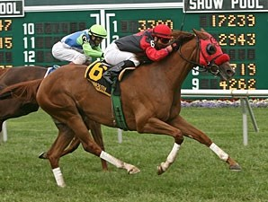 Clare Skies Ahead wins the 2012 Omnibus Stakes.