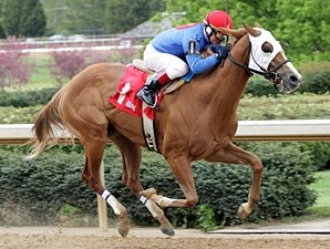 Affirmed Truth wins the 2009 Rainbow Miss Stakes.