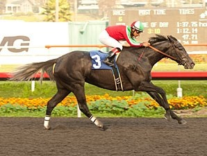 Lady of Fifty wins the 2012 Bayakoa.