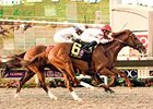 "Go Between won the 2008 Pacific Classic.<br><a target=""blank"" href=""http://www.bloodhorse.com/horse-racing/photo-store?ref=http%3A%2F%2Fpictopia.com%2Fperl%2Fgal%3Fprovider_id%3D368%26ptp_photo_id%3D5654970%26ref%3Dstory"">Order This Photo</a>"