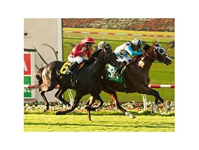 My Best Brother held off Tones to win the 2nd Division of the Oceanside Stakes on opening day at Del Mar.