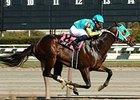 "J Be K scores an easy win in the Bay Shore under Garrett Gomez.<br><a target=""blank"" href=""http://www.bloodhorse.com/horse-racing/photo-store?ref=http%3A%2F%2Fpictopia.com%2Fperl%2Fgal%3Fprovider_id%3D368%26ptp_photo_id%3D4084530%26ref%3Dstory"">Order This Photo</a>"