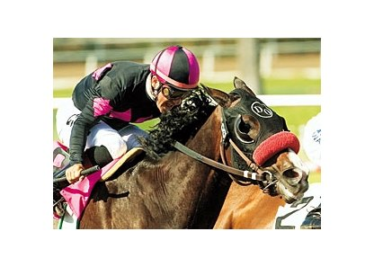 "Lava Man is scheduled to run on turf in the Khaled Stakes.<br><a target=""blank"" href=""http://www.bloodhorse.com/horse-racing/photo-store?ref=http%3A%2F%2Fpictopia.com%2Fperl%2Fgal%3Fprovider_id%3D368%26ptp_photo_id%3D1573138%26ref%3Dstory"">Order This Photo</a>"