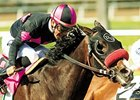 Groom's Return Helps Lava Man Prepare