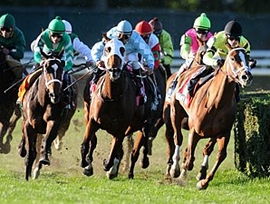 Eye of Taurus wins the 2010 Athenia.