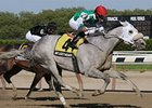 "Afleet Again pours it on late in the Withers. <br><a target=""blank"" href=""http://www.bloodhorse.com/horse-racing/photo-store?ref=http%3A%2F%2Fpictopia.com%2Fperl%2Fgal%3Fprovider_id%3D368%26ptp_photo_id%3D8923658%26ref%3Dstory"">Order This Photo</a>"