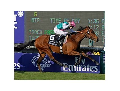 "Midday<br><a target=""blank"" href=""http://www.bloodhorse.com/horse-racing/photo-store?ref=http%3A%2F%2Fpictopia.com%2Fperl%2Fgal%3Fprovider_id%3D368%26ptp_photo_id%3D8609237%26ref%3Dstory"">Order This Photo</a>"