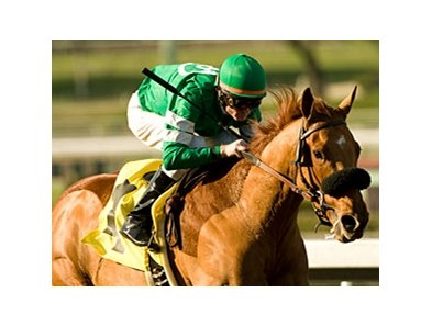"The team of Caracortado and Paul Atkinson will appear next in the San Felipe Stakes.<br><a target=""blank"" href=""http://www.bloodhorse.com/horse-racing/photo-store?ref=http%3A%2F%2Fpictopia.com%2Fperl%2Fgal%3Fprovider_id%3D368%26ptp_photo_id%3D8792512%26ref%3Dstory"">Order This Photo</a>"