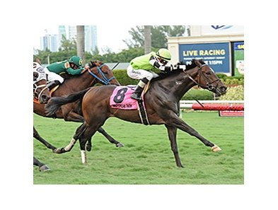 "Lochte will try to for his third stakes win of 2014 in the Tropical Turf Handicap.<br><a target=""blank"" href=""http://photos.bloodhorse.com/AtTheRaces-1/At-the-Races-2014/i-35G6QCG"">Order This Photo</a>"