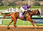 Lord Nelson won the Speakeasy Stakes Oct. 13 at Santa Anita.