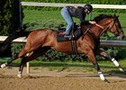 "Big Brown worked a swift 3/8's of a mile Thursday at Churchill Downs.<br><a target=""blank"" href=""http://www.bloodhorse.com/horse-racing/photo-store?ref=http%3A%2F%2Fpictopia.com%2Fperl%2Fgal%3Fprovider_id%3D368%26ptp_photo_id%3D4360890%26ref%3Dstory"">Order This Photo</a>"