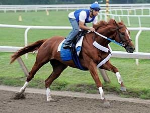Curlin Works; Plans Still Undetermined