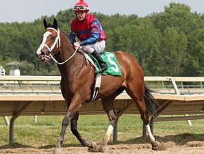 Ann's Smart Dancer wins the 2011 Caught in The Rain Stakes.