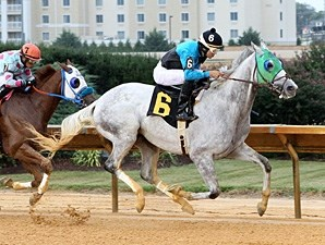 Golden Set wins the 2013 Dr. Ernest Benner Handicap.