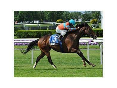 "Tannery rolls home to win the Sheepshead Bay Stakes.<br><a target=""blank"" href=""http://photos.bloodhorse.com/AtTheRaces-1/at-the-races-2013/27257665_QgCqdh#!i=2534324143&k=Q2MzZ23"">Order This Photo</a>"