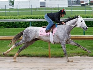 Joyful Victory Posts Bullet Work at Churchill