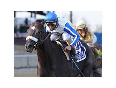 Morning Line