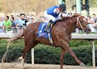 Duke of Mischief flies home in the Oaklawn Handicap.