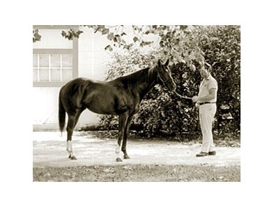 Secretariat, shown as a 2-year-old, was foaled March 30, 1970