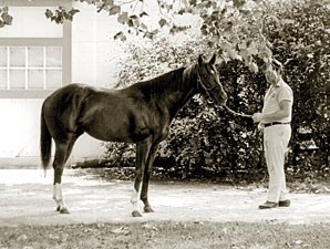 Secretariat, shown as a 2-year-old, was foaled March 30, 1970.