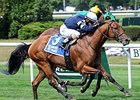 "Lubash will try to win the Ashley T. Cole Stakes for a second straight year and third time overall.<br><a target=""blank"" href=""http://photos.bloodhorse.com/AtTheRaces-1/At-the-Races-2014/i-NLKSmQg"">Order This Photo</a>"