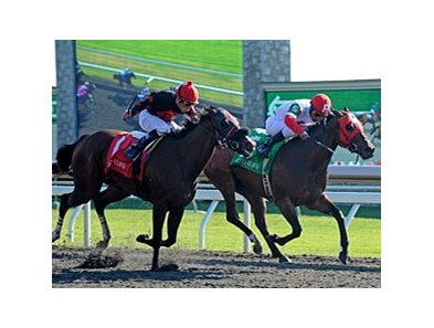Holiday for Kitten has won two stakes at Keeneland.