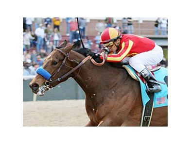 Secret Circle won division 2 of the Southwest at Oaklawn Park on Feb. 20.