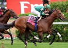 Dubai World Cup Attracts 312 Nominations