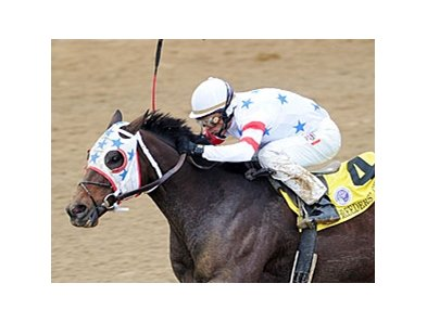 Eldaafer is running in his 4th Breeders' Cup Marathon.