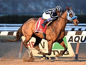 Private Zone wins the 2014 Cigar Mile.