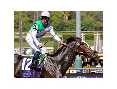 "The Breeders' Cup Filly & Mare Sprint, won in 2008 by Ventura, will be a grade I in 2009.<br><a target=""blank"" href=""http://www.bloodhorse.com/horse-racing/photo-store?ref=http%3A%2F%2Fpictopia.com%2Fperl%2Fgal%3Fprovider_id%3D368%26ptp_photo_id%3D6445701%26ref%3Dstory"">Order This Photo</a>"