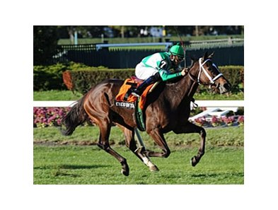 "Eye of Taurus captures the Athenia Stakes under Eddie Castro.<br><a target=""blank"" href=""http://www.bloodhorse.com/horse-racing/photo-store?ref=http%3A%2F%2Fpictopia.com%2Fperl%2Fgal%3Fprovider_id%3D368%26ptp_photo_id%3D9235213%26ref%3Dstory"">Order This Photo</a>"