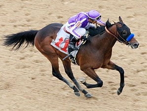 Castaway in the Southwest Stakes.