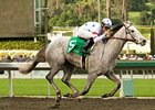 "Stardom Bound makes her 4-year old debut in the El Encino at Santa Anita.<br><a target=""blank"" href=""http://www.bloodhorse.com/horse-racing/photo-store?ref=http%3A%2F%2Fpictopia.com%2Fperl%2Fgal%3Fprovider_id%3D368%26ptp_photo_id%3D7685847%26ref%3Dstory"">Order This Photo</a>"