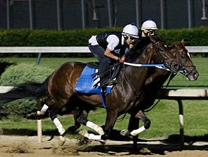 Asmussen Pair Work for Kentucky Derby